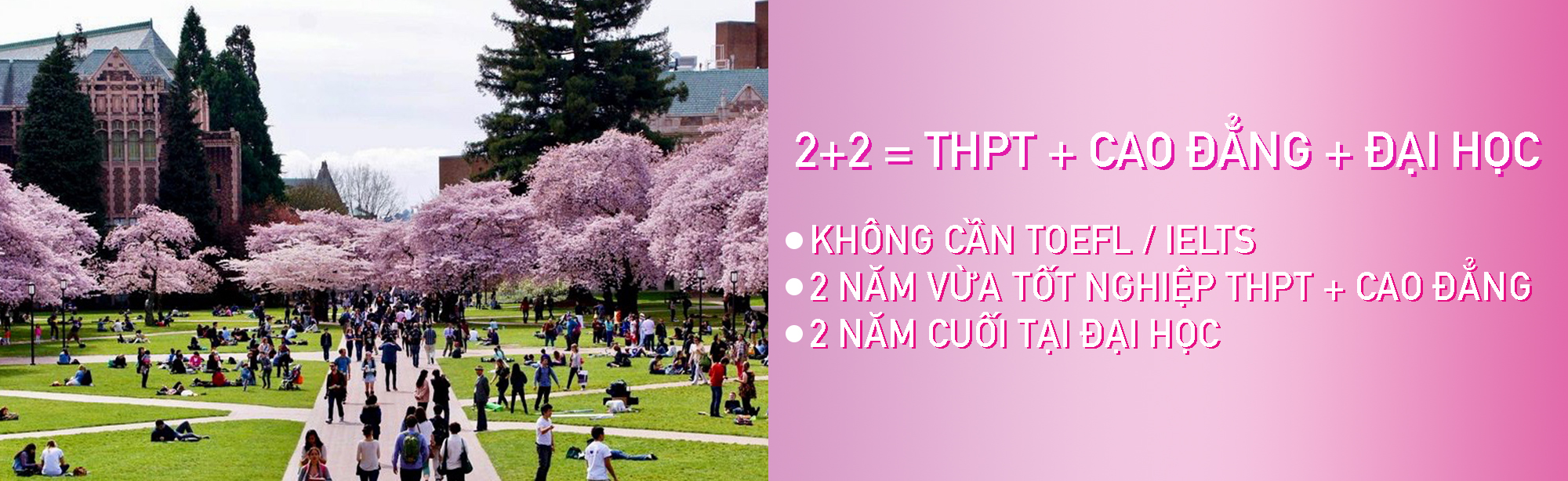 2+2 = THPT + CAO ĐẲNG + ĐẠI HỌC